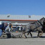 horsepull3