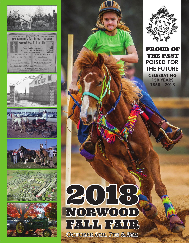 2018 Fair Book Cover JPG